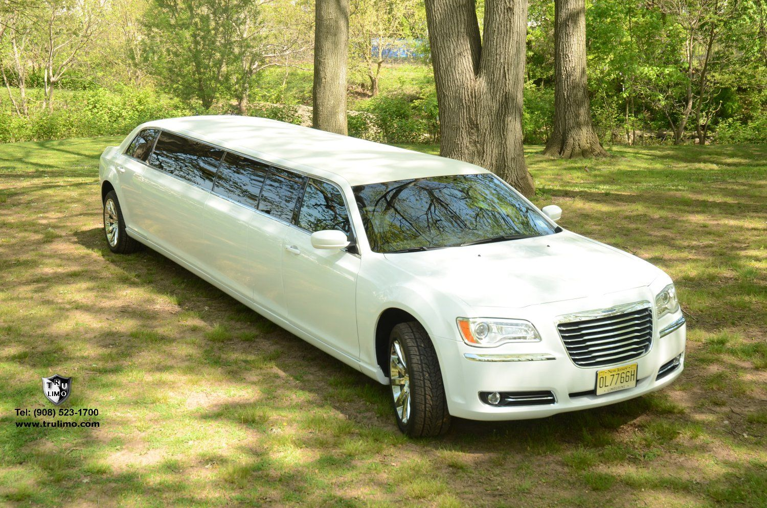 (202) 10 Passenger Chrysler 300 With Jet Doors (White) Exterior 10 » TRU LIMO & 202) 10 Passenger Chrysler 300 With Jet Doors (White) Exterior 10 ... Pezcame.Com