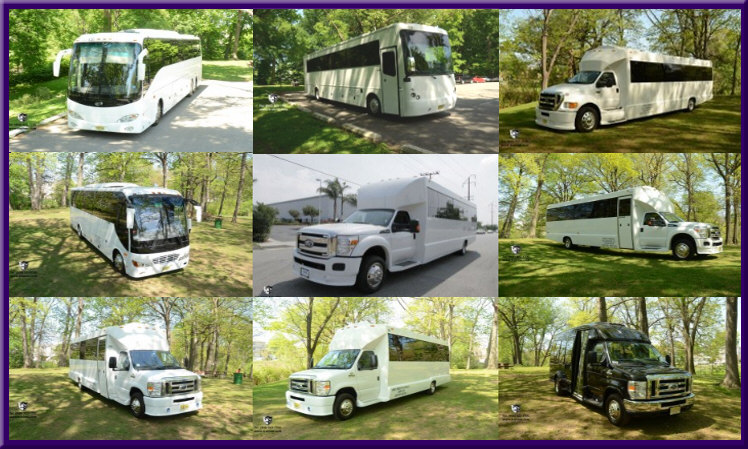 New Jersey Party Bus Fleet HOME