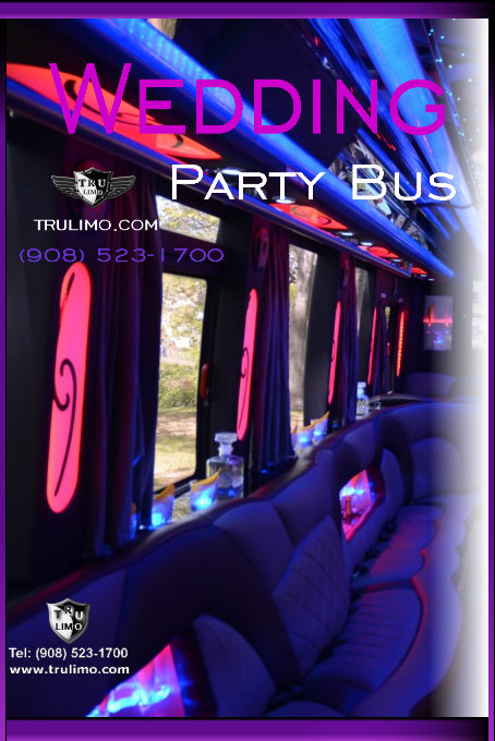 New Jersey Wedding Party Bus Rental Service WATCHUNG NEW JERSEY WEDDING LIMOUSINES