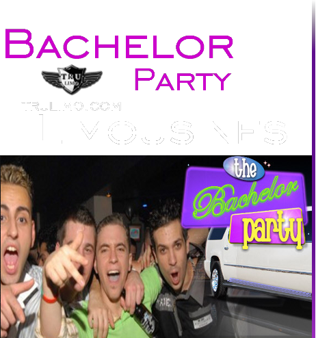 bachelor party limousines BACHELOR PARTY BUS