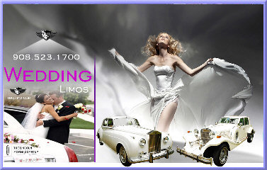 new jersey wedding limo rental NJ PARTY BUS