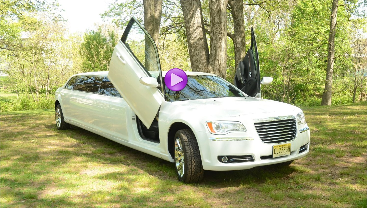 trulimo stretch limousines Party Bus NJ Rental